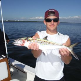 Spanish Mackerel !!