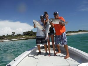 silver red fish