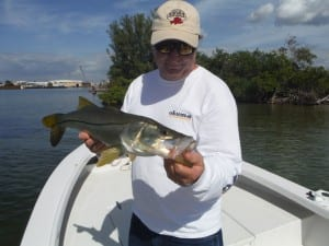 Snook Fishing Charter Tampa Bay