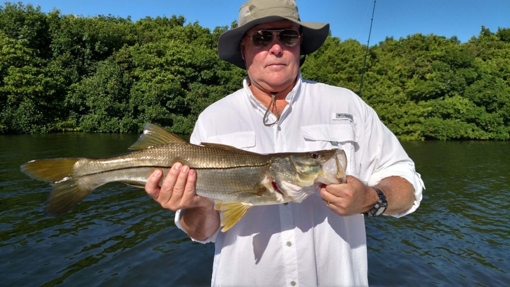 Nice snook tampa bay fishing charters for Tampa bay fishing guides