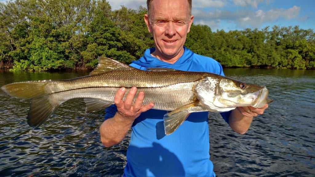 31 snook tampa bay fishing charters for Tampa florida fishing charters