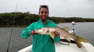 snook fishing tampa