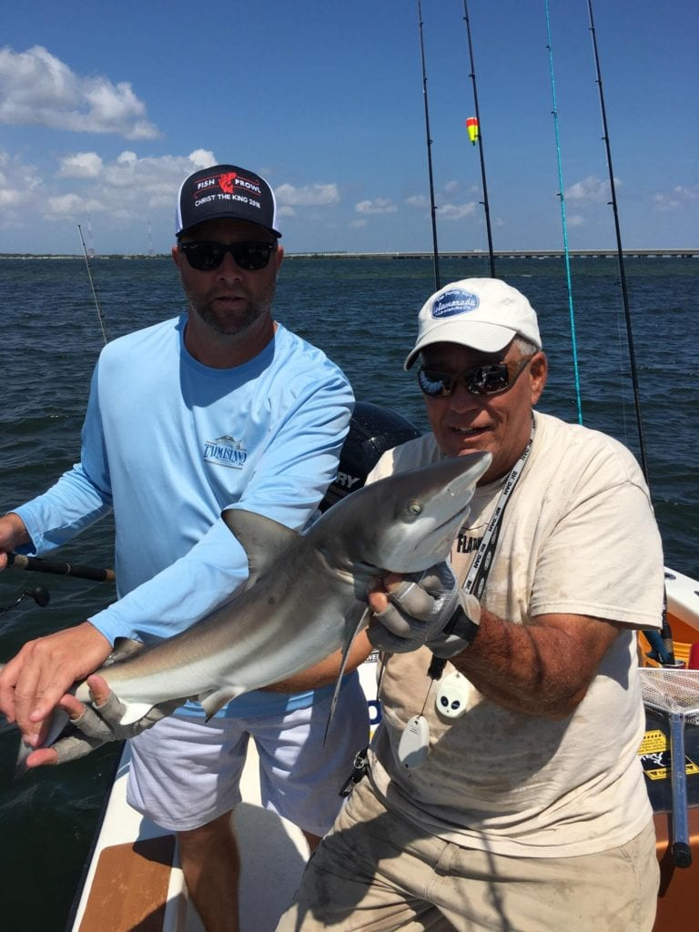 Small black tip shark tampa bay fishing charters for Fishing charters tampa