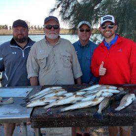 trout fishing in tampa bay