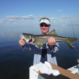 Tampa Bay fishing reports