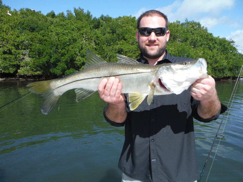 fishing report for tampa