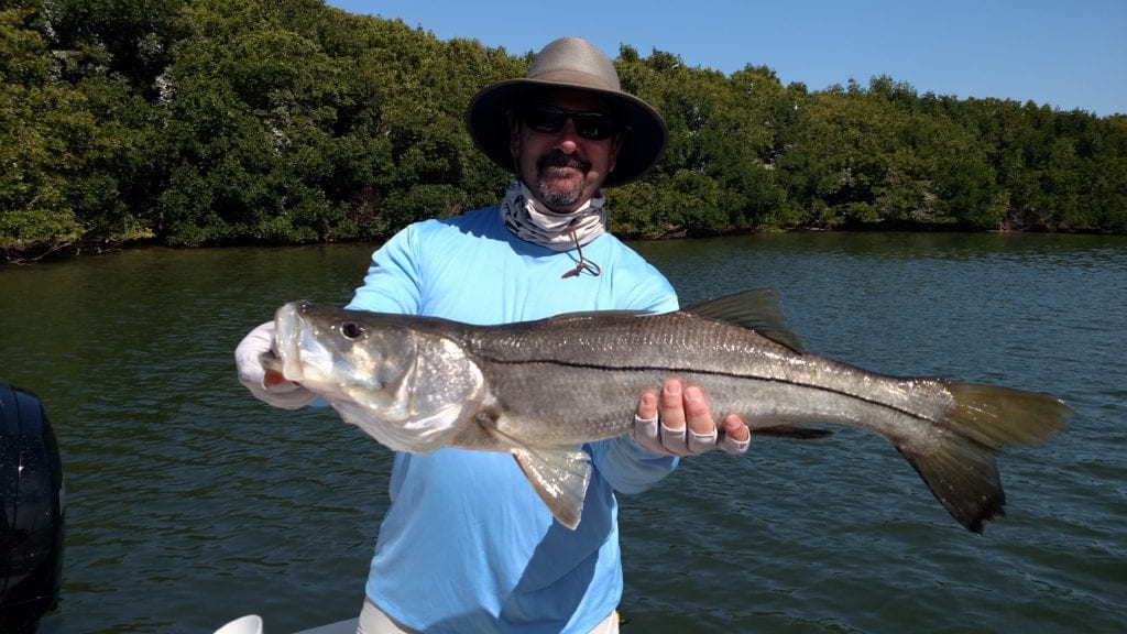 An angler with a blue shirt and a wide brimmed sun hat holding a large snook he caught while fishing in Tampa