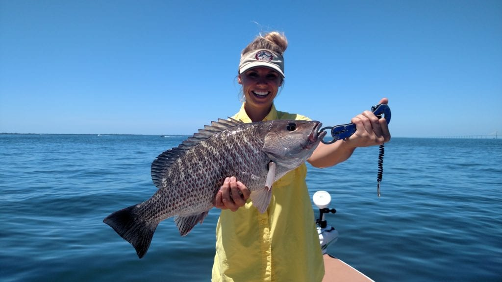 snapper fishing charter tampa