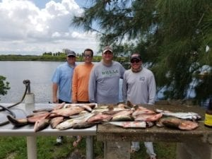 mangrove snapper fishing charters