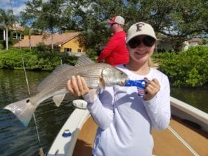 tampa red drum fishing charters