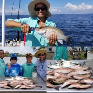 snapper fishing charters tampa