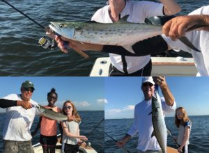 Charter Fishing Tampa