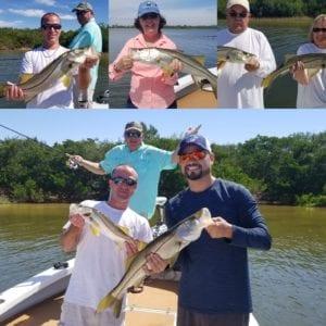 tampa flats and bay fishing charters