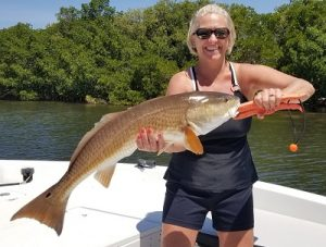 bay fishing tampa