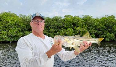 tampa bay flats fishing